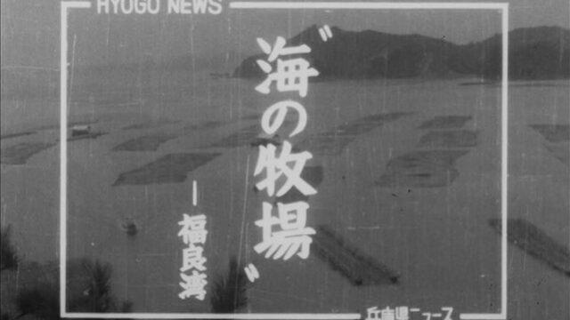 """""""海の牧場"""""""