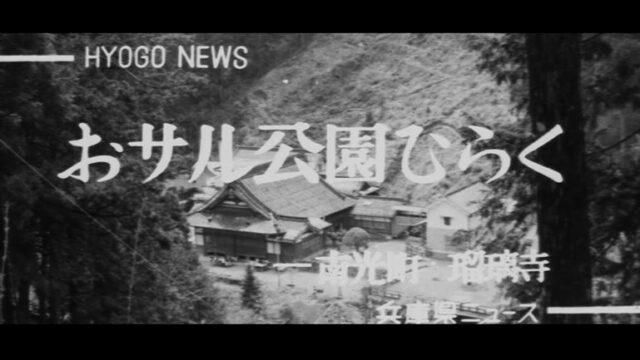 おサル公園ひらく-南光町瑠璃寺-
