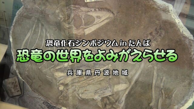2011年10月22日 恐竜化石シンポジウムinたんば「恐竜の世界をよみがえらせる」