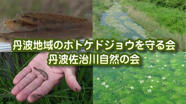 「源流の里」丹波 自然保護活動紹介