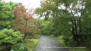 好古園(潮音斎と渡廊下)