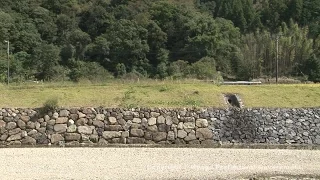 宿場町平福(堤防)