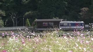 宿場町平福(コスモスと駅)