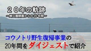 Vol.01 | コウノトリを絶滅の危機から救え!