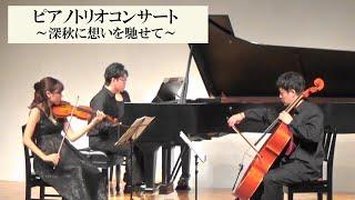 【兵庫県立美術館・美術館の調べ】ピアノトリオコンサート